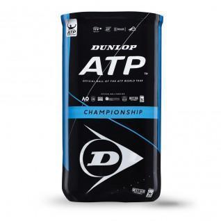 Lot de 2 tubes de 4 balles de tennis Dunlop atp championship