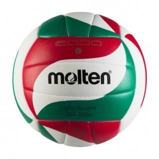 Ballon d'entrainement Molten BVL-V5M2000-L