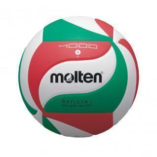 Ballon de compétition Molten V5M4000 [Taille 5]