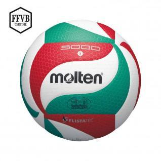 Ballon de compétition Molten V5M5000 LNV [Taille 5]